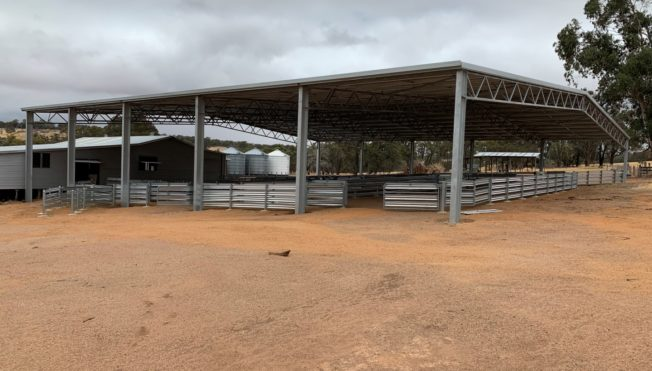 eastern perth farm yard shot with open sided covered shed for livestock