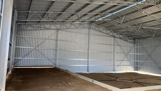 Inside of farm shed built for sheering with high roof dirt floor and built with corrugated iron.
